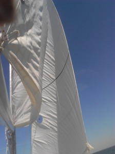 Sailing March 17 Picture 2